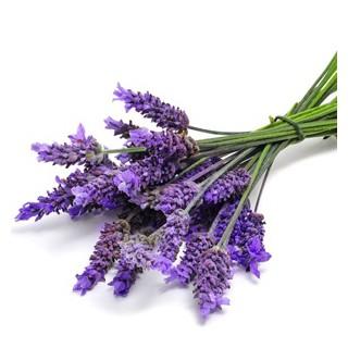 Hương Hoa oải hương Lavender 100g - 121100 thumbnail