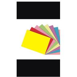 Bìa thái A4 nhiều màu