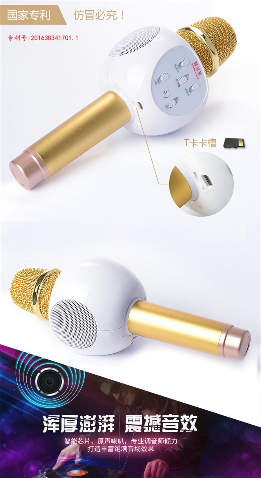 Micro Karaoke Buetooth Cao Cấp ZBX-66 10