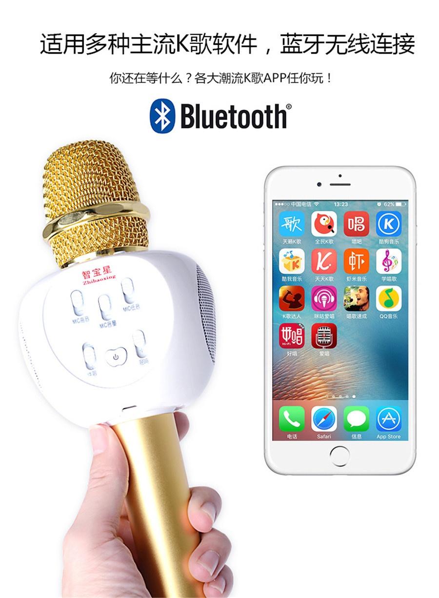 Micro Karaoke Buetooth Cao Cấp ZBX-66 7