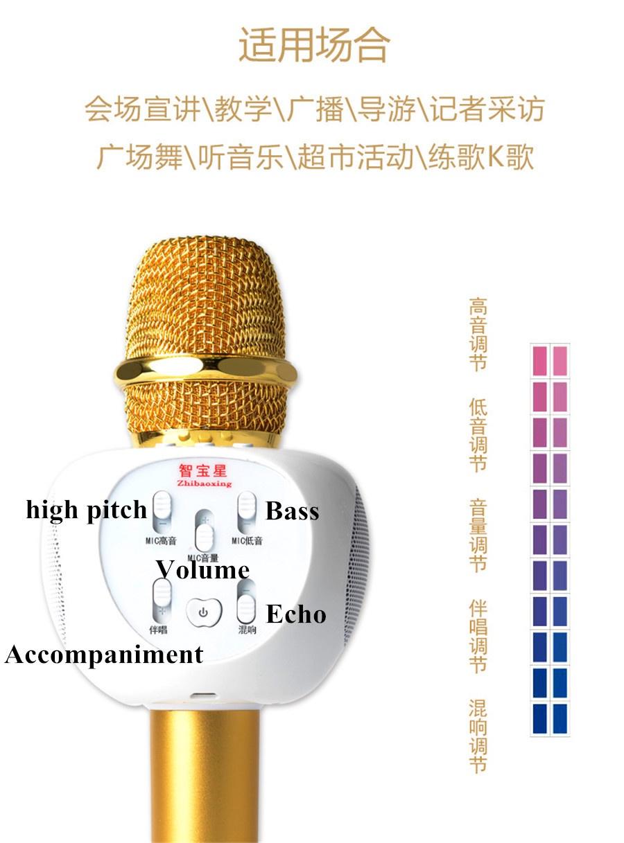 Micro Karaoke Buetooth Cao Cấp ZBX-66 4