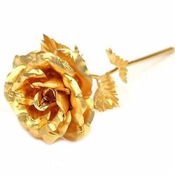 Hoa hồng quà tặng