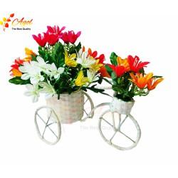 Xe hoa