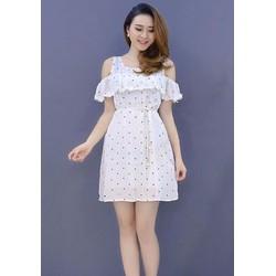 Đầm Suông Chấm Bi Bèo Ngực Dễ Thương - DXM367