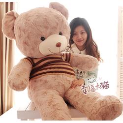 Gấu Teddy lông xoắn 049