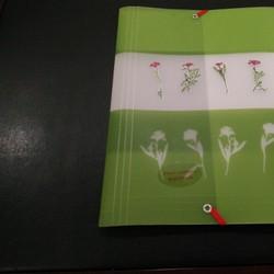 Bìa hồ sơ ép hoa