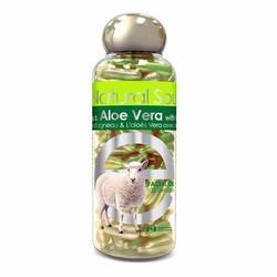 Viên Bôi Nhau Thai Cừu Bill Placenta - Aloe Vera - Canada