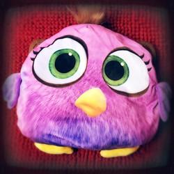 Túi sưởi hình Angry bird