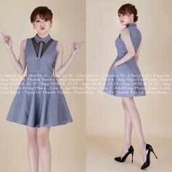 Đầm Xòe Công Sở Giá Hot