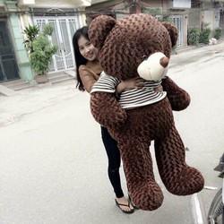 Gấu Bông Teddy 1m7 - Nâu socola