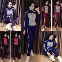 Set thể thao nữ cotton cao cấp - hàng Việt Nam xuất khẩu
