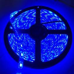 đèn led dây 5050 bản to - cuộn 5 mét