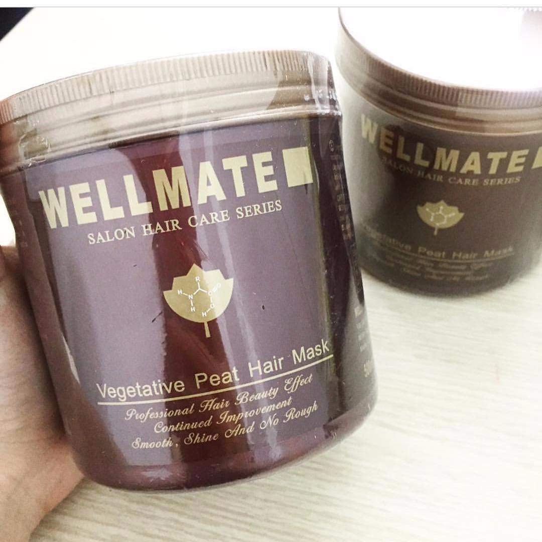 Kết quả hình ảnh cho Kem hấp dầu tóc cao cấp WELLMATE 500gr
