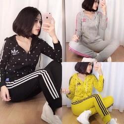 Set thể thao cotton hàng Việt Nam xuất khẩu cao cấp