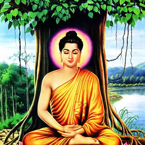 Hình Phật Thích Ca Mâu Ni - 4098796 , 4418919 , 15_4418919 , 259000 , Hinh-Phat-Thich-Ca-Mau-Ni-15_4418919 , sendo.vn , Hình Phật Thích Ca Mâu Ni