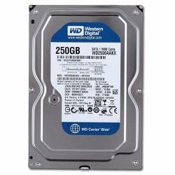 Ổ cứng Western Digital 250GB