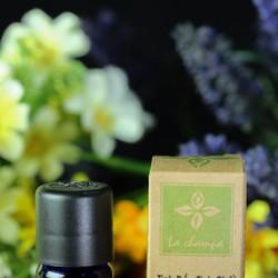 Tinh Dầu Oải Hương Lavender Oil  - 10ml