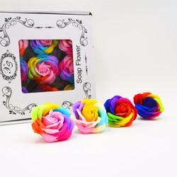 Hoa hồng xà bông 7 màu