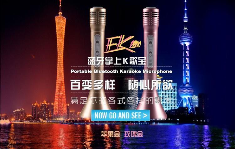 Mic kèm Loa Bluetooth  hát Karaoke Salar K300 3 trong 1 chính hãng 2