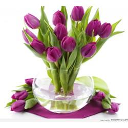 Hoa lụa trang trí - Tulip cành 5 bông