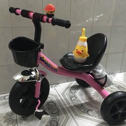 Xe đạp thể thao kèm bình nước Hồng