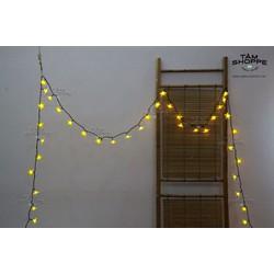 Dây đèn led Hoa mai vàng 7m