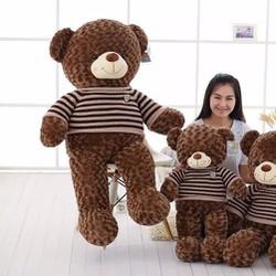 Quà tặng thú bông Gấu áo len socola 1m