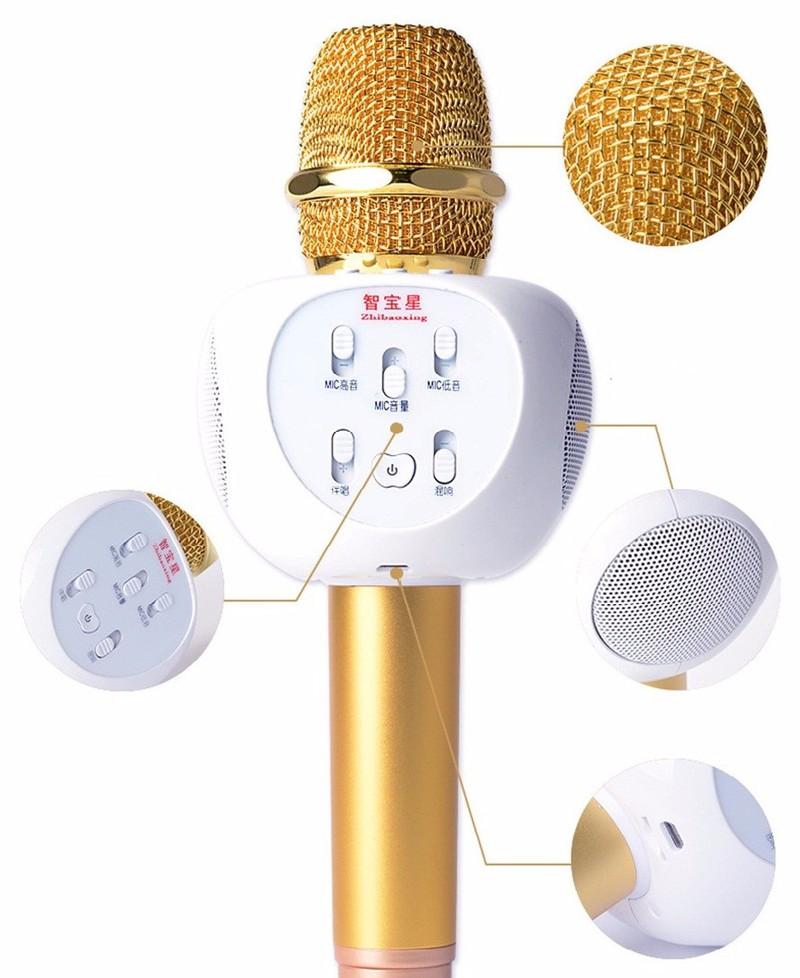 Micro Karaoke Bluetooth ZBX66 Có Gắn Thẻ Nhớ 5