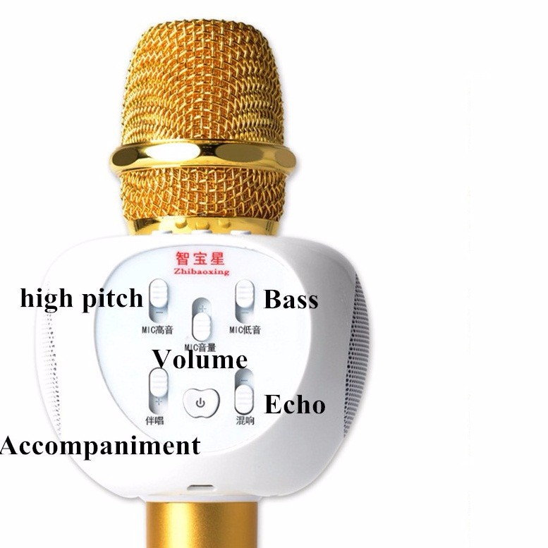 Micro Karaoke Bluetooth ZBX66 Có Gắn Thẻ Nhớ 3