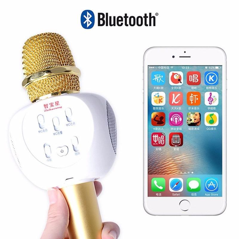 Micro Karaoke Bluetooth ZBX66 Có Gắn Thẻ Nhớ 6