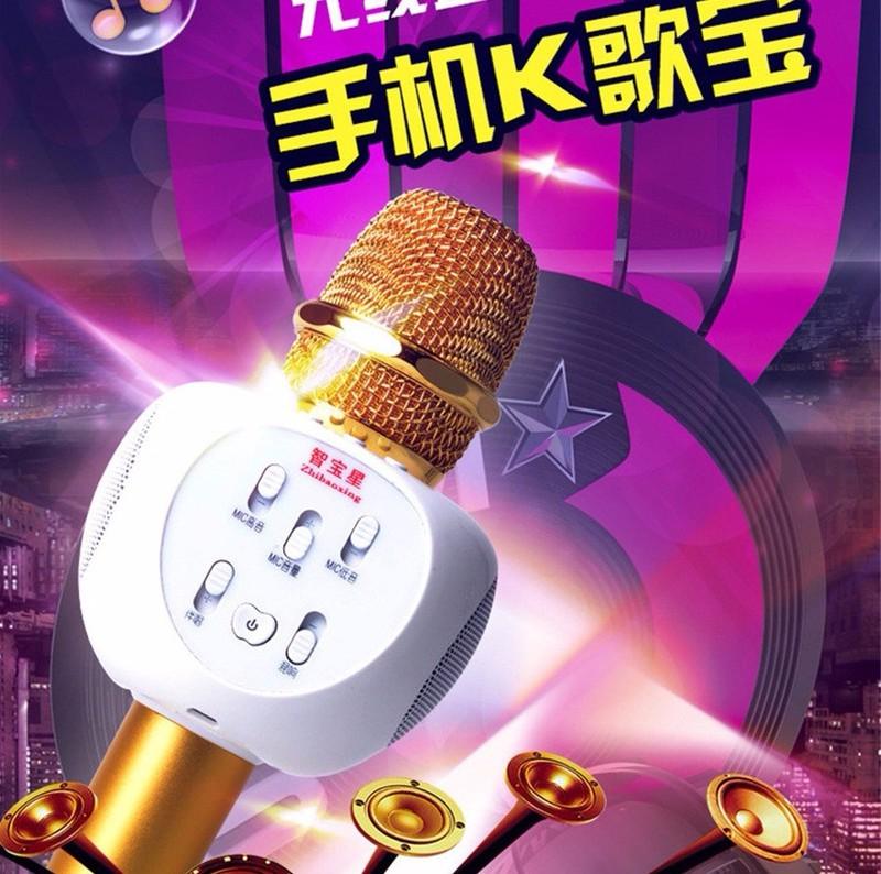 Micro Karaoke Bluetooth ZBX66 Có Gắn Thẻ Nhớ 4