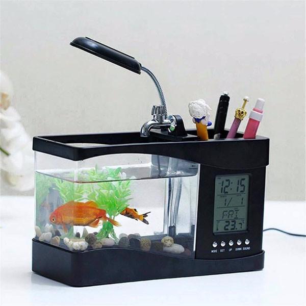 Bể cá mini sử dụng nguồn USB 5