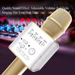 Micro kèm loa karaoke bluetooth platium Q9