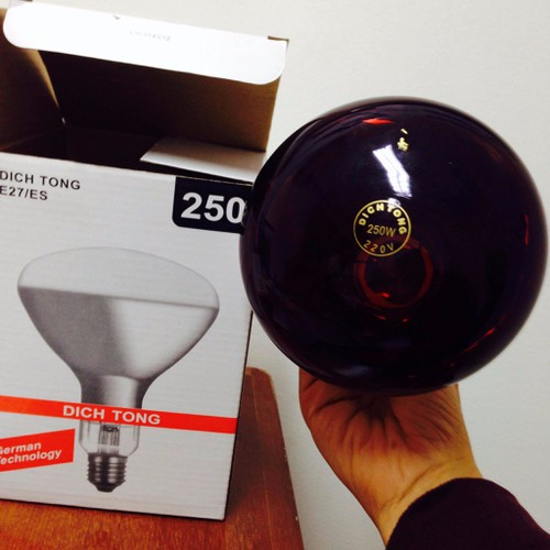 Bóng đèn hồng ngoại dịch tông 250w - 4118863 , 4601412 , 15_4601412 , 85000 , Bong-den-hong-ngoai-dich-tong-250w-15_4601412 , sendo.vn , Bóng đèn hồng ngoại dịch tông 250w