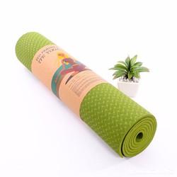 Thảm tập Yoga TPE 8mm 1 lớp - Xanh lá - Tặng túi đựng thời trang