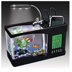 Bể cá mini Phong thủy