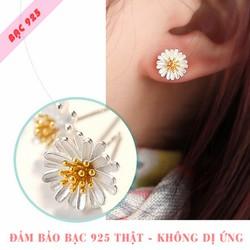 Bông tai nữ S925 hoa cúc xinh xắn dễ thương SE-D100093