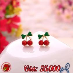 Bông Tai Quả Cherry