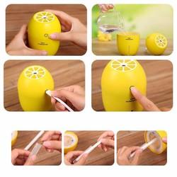 Máy tạo độ ẩm trong nhà Lemon
