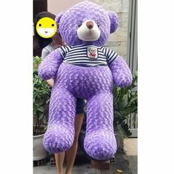 Gấu bông tím Teddy 1m4
