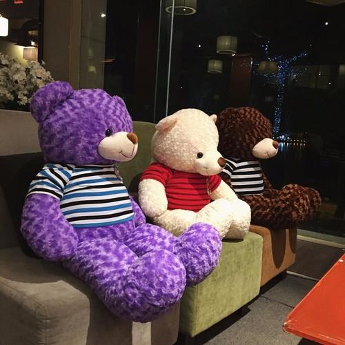 Gấu teddy khổ 1m2 tím cao cấp