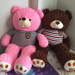 Gấu Teddy 1m - Gấu bông Teddy giá rẻ - Màu Hồng