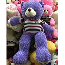 Gấu Teddy 1m4 - Gấu bông Teddy m4 giá rẻ - Màu Tím
