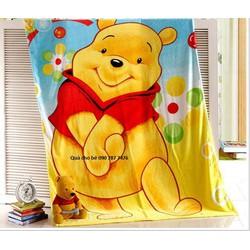 Mền băng lông Thailan Pooh