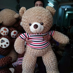 Gấu Teddy 1m4 - Gấu bông Teddy m4 giá rẻ - Màu cafe sữa