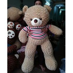 Gấu Teddy 1m8 - Gấu bông Teddy m8 giá rẻ - Màu Hồng