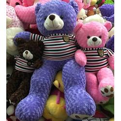 Gấu Teddy 1m2 - Gấu bông Teddy m2 giá rẻ - Màu Tím