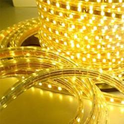 LED cuộn 5050 100m