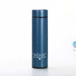 Bình giữ nhiệt inox cao cấp 450ml DSA633