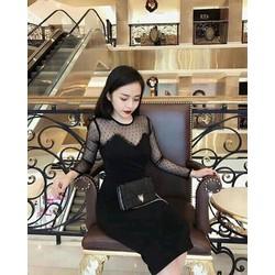 Đầm body đen phôi lưới tay dài